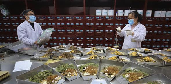 疫情为中医药海外推广带来机遇 华人从业者信心强
