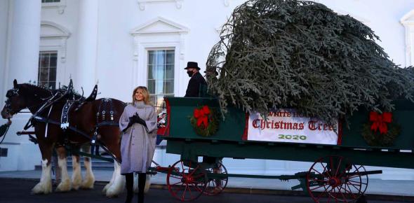 美媒:疫情严峻,梅拉尼娅不戴口罩在白宫办活动