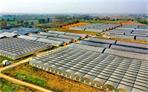河南驻马店市驿城区:推动三大产业高质量发展