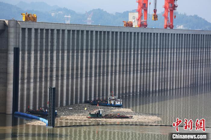 三峡大坝前漂浮物全部打捞上岸进行无害化处理(资料图) 王罡 摄