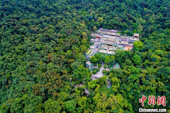 位于广东肇庆的鼎湖山(资料图)。 林荫 摄