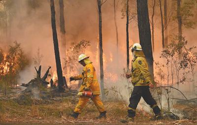 澳大利亚救灾机制面临林火蔓延考验