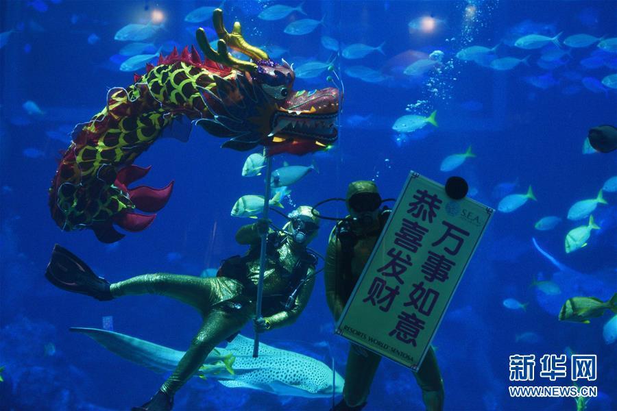 (新华视界)(1)新加坡:水下舞龙庆新年