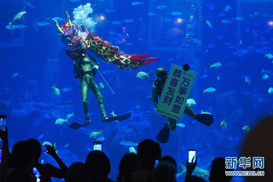 (新华视界)(5)新加坡:水下舞龙庆新年