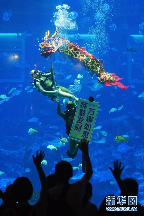 (新华视界)(4)新加坡:水下舞龙庆新年