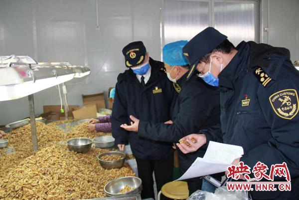"""""""网上申报+不见面审核"""" 保障河南农产品防控期间畅销海外"""