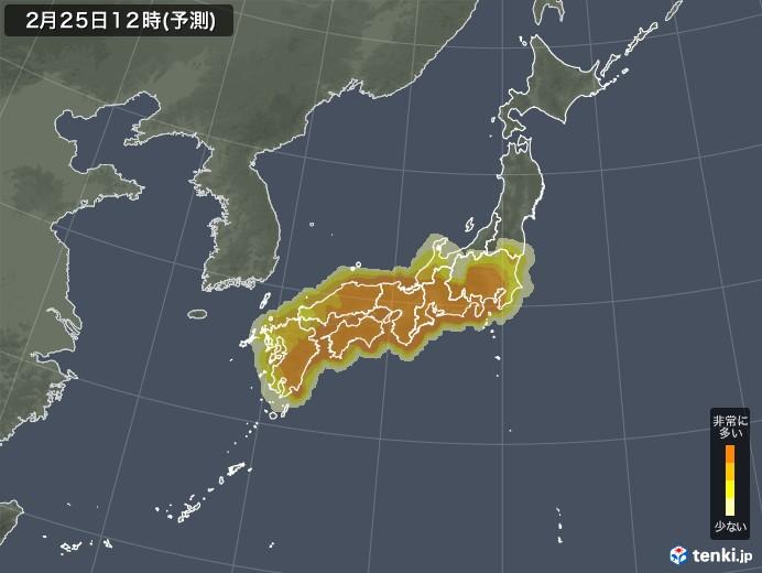 pollen-japan-detail-large.jpg