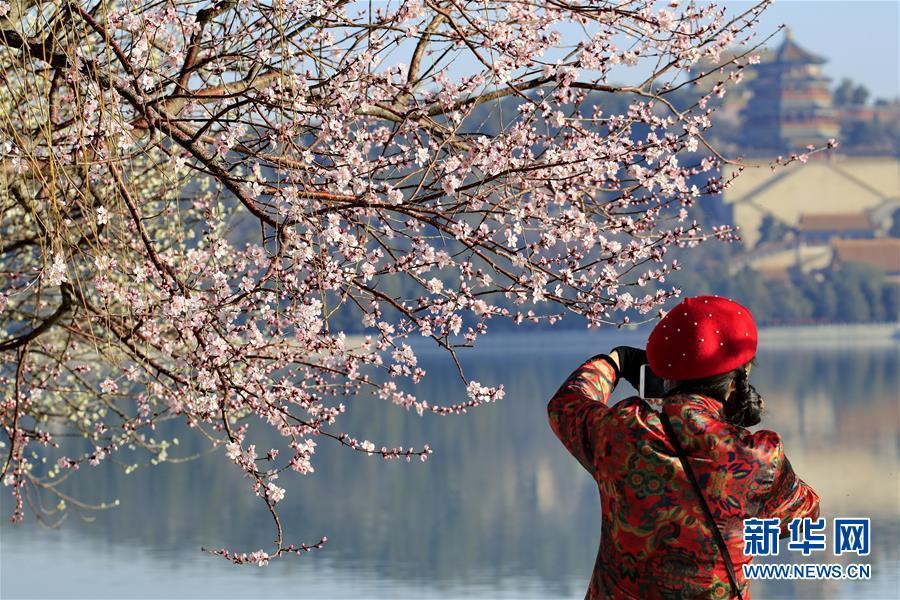 #(环境)(1)春暖花开