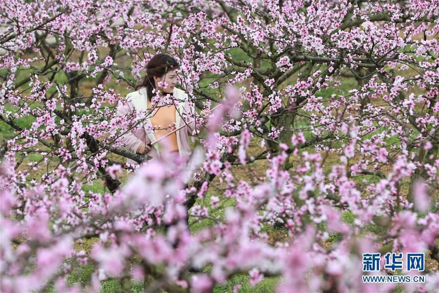 #(环境)(3)春暖花开