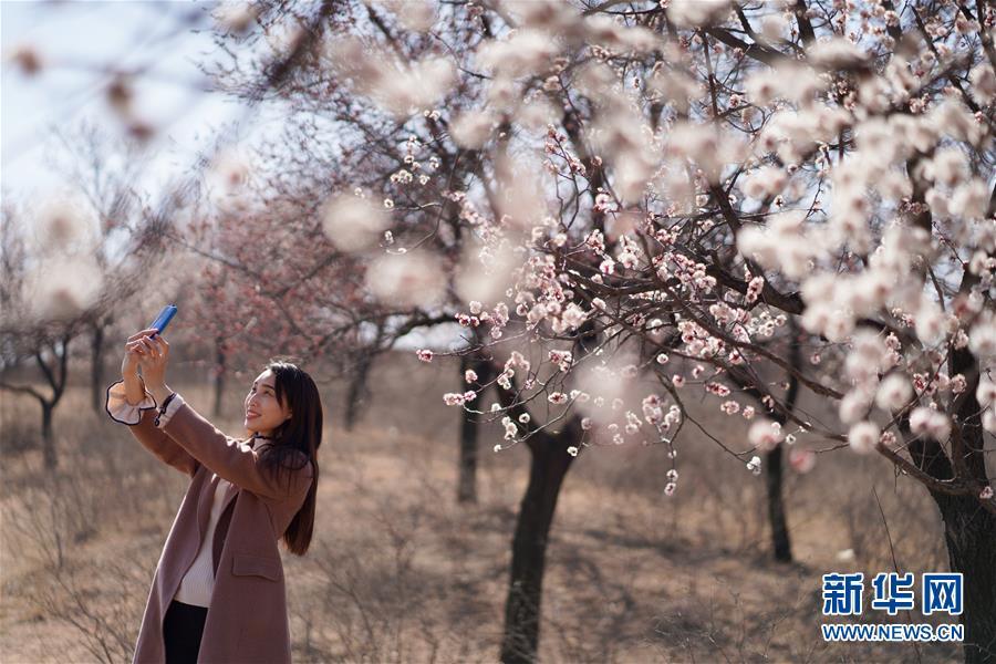 #(环境)(4)春暖花开