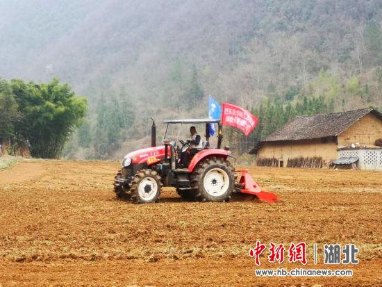 吴亚晖在玉米基地用机器翻地 冯南京供图