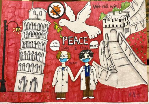 援助意大利缩影,海外华人的担当与情怀1560.png