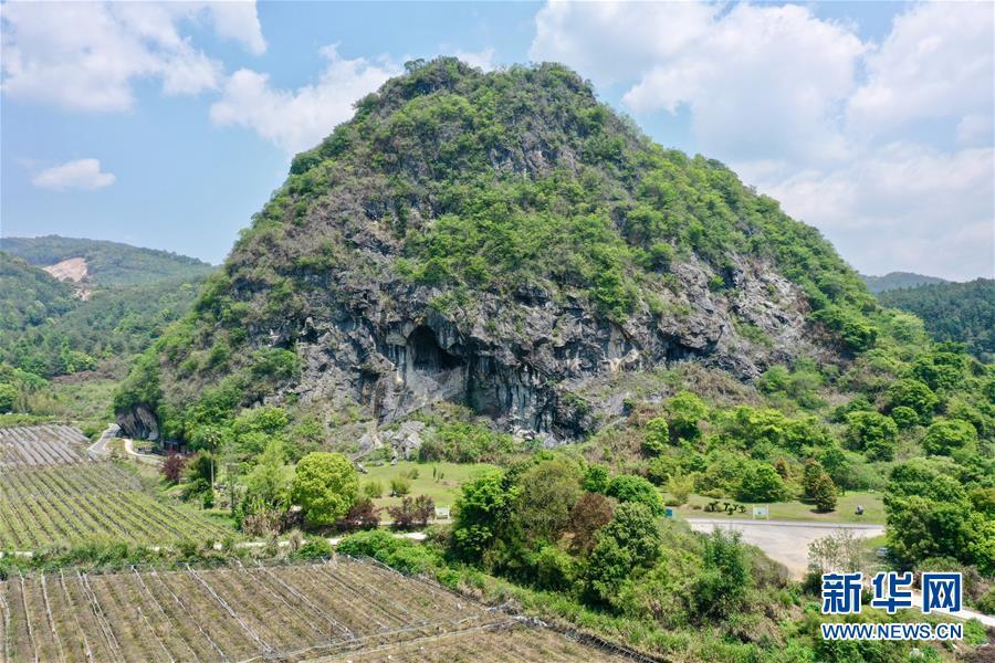 (图文互动)(1)聆听18万年前的远古回声——福建万寿岩遗址保护纪实