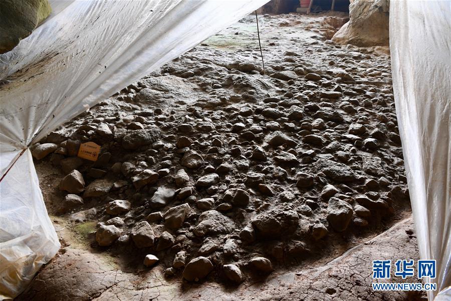 (图文互动)(5)聆听18万年前的远古回声——福建万寿岩遗址保护纪实