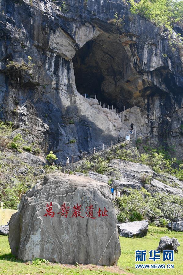 (图文互动)(10)聆听18万年前的远古回声——福建万寿岩遗址保护纪实