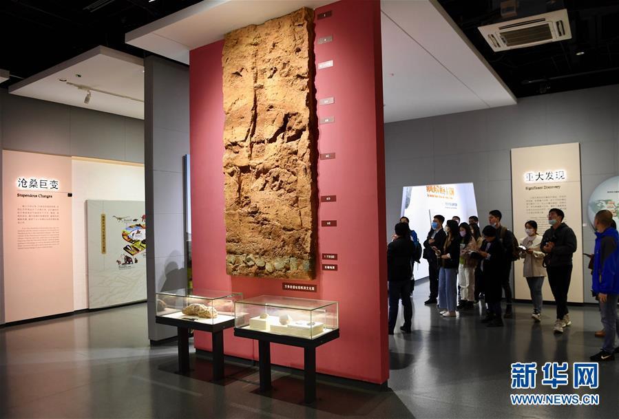 (图文互动)(8)聆听18万年前的远古回声——福建万寿岩遗址保护纪实