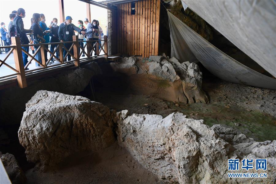 (图文互动)(4)聆听18万年前的远古回声——福建万寿岩遗址保护纪实