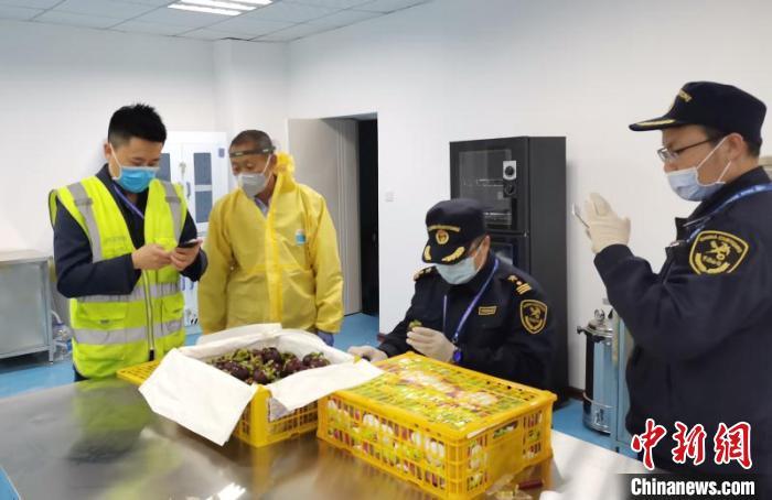 """泰国15吨山竹""""包机""""运抵兰州海关剖果检疫保舌尖安全"""