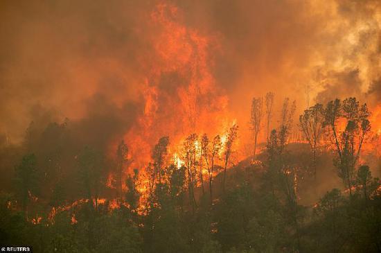 """美加州大火持续 天空变橙色似""""世界末日"""""""