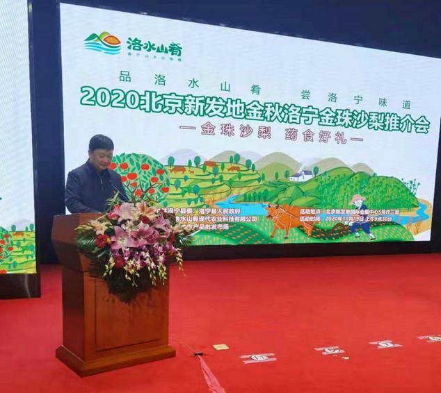 洛宁县副书记、县长周东柯在推介会上演讲_202011洛20202040_1.jpg