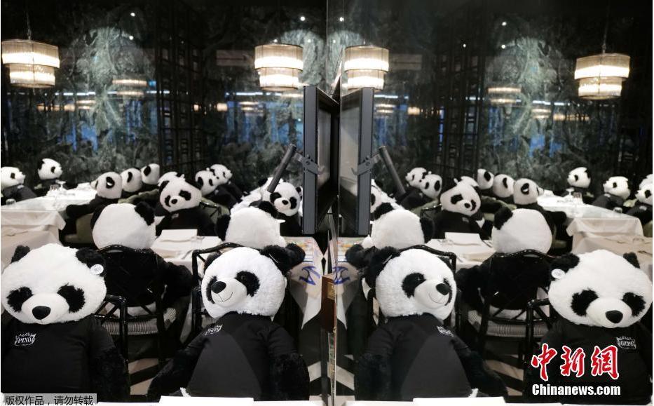 """德国持续""""封城"""" 餐厅老板摆满大熊猫玩偶当顾客"""