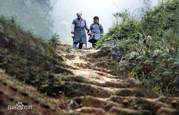 【感人肺腑的中国故事⑮】 爱情天梯