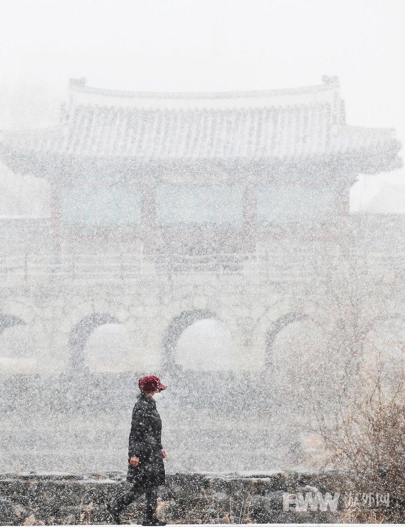 大雪纷飞!韩国多地迎来强暴风雪