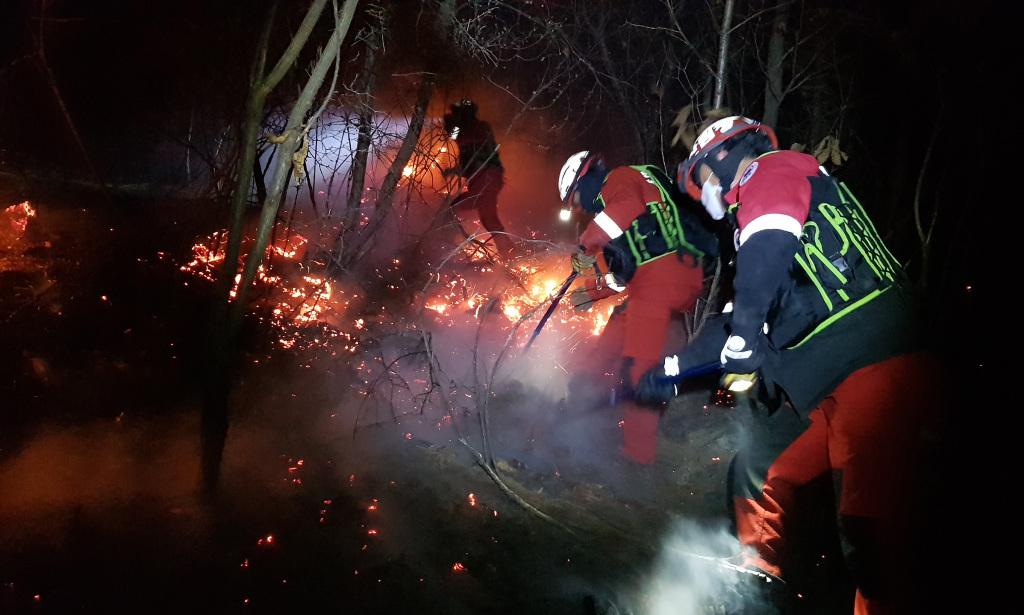 韩国襄阳发生森林火灾 火光将天空染红