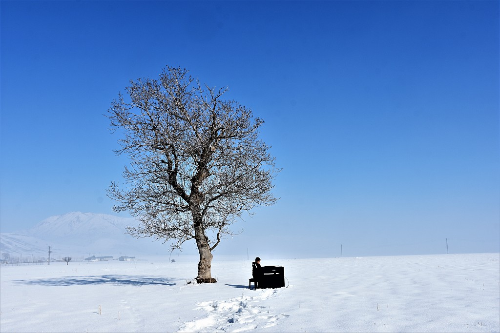 土耳其9岁视觉障碍钢琴家雪地演奏 树下弹钢琴梦想成真