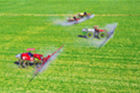 人勤春来早 雨水至农事忙