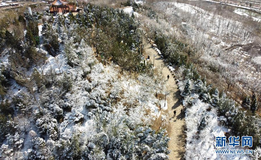 春雪落津城