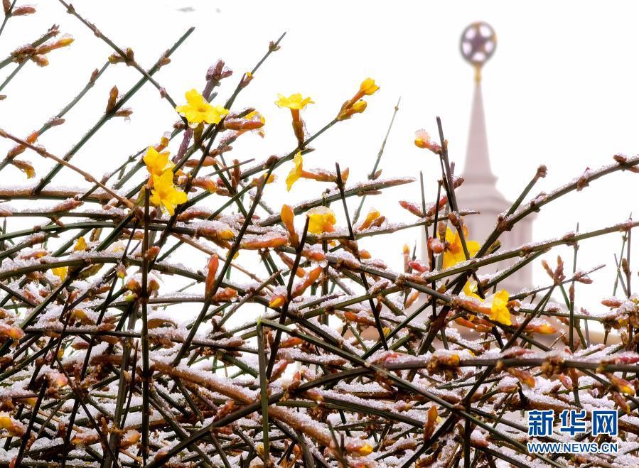 北京降春雪