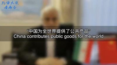 """【驻华大使看两会】""""中国为全世界提供了公共产品"""""""