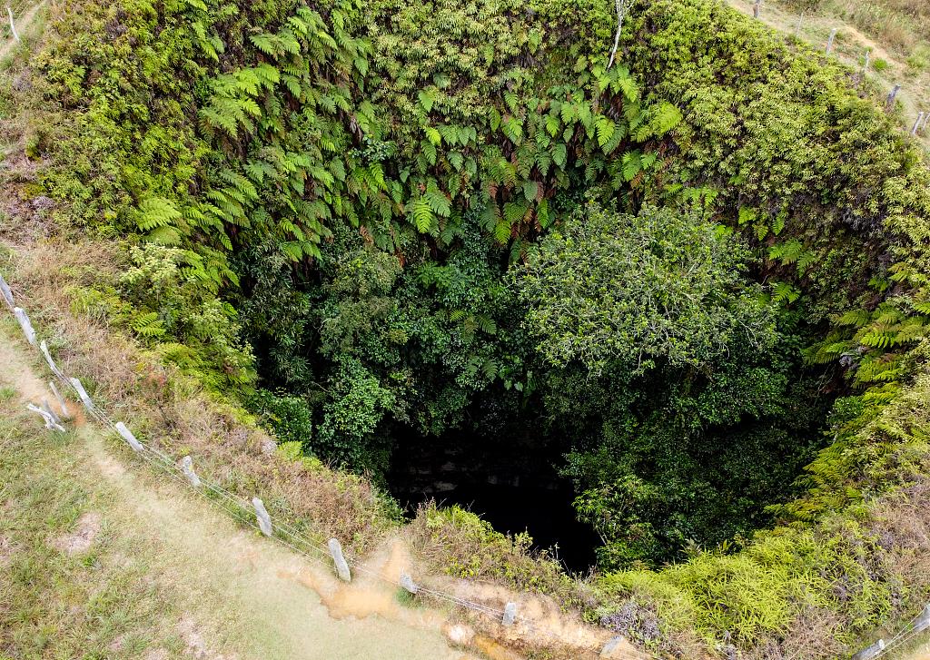 探访哥伦比亚5千年前岩石画 因深处山区难抵达著称