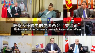 """【驻华大使看两会】我眼中的中国两会""""关键词"""""""