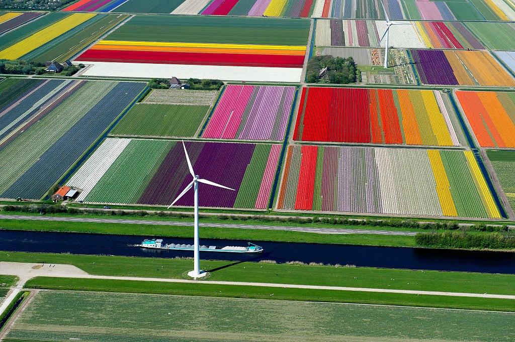 """世界环境日:美丽干净的地球才是""""快乐星球"""""""