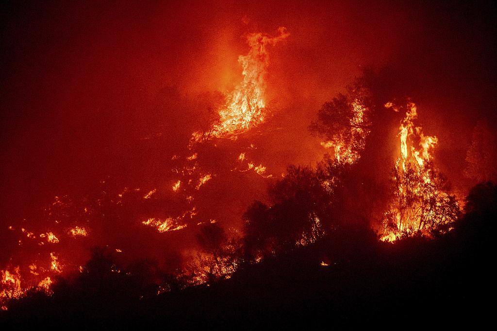 美国加州红杉国家公园山火肆虐 2000多棵巨杉受威胁