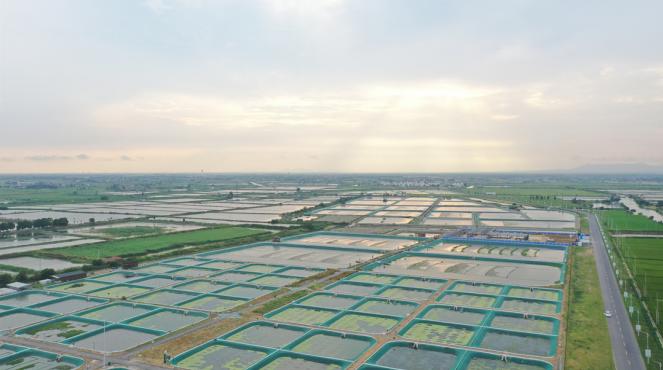 常州:5G打造智慧农业