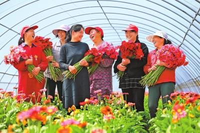 农户收获丰收的喜悦.png