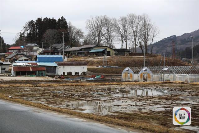 日本福岛县饭馆村被废弃的农田和房屋。(新华社)