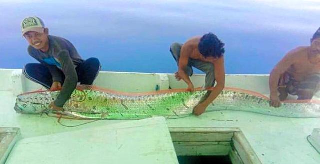 印尼渔民上传的照片(朝日新闻)