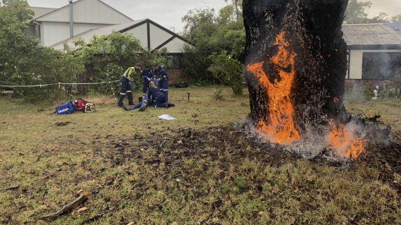 一名71岁的老妇人在树旁遭遇雷击。(图源:悉尼晨报)