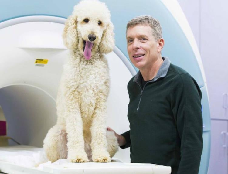 神经科学家格雷戈里·伯恩斯正在对狗思考和看待世界的方式进行研究(图源:《国家邮报》)