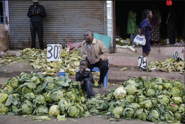 肯尼亚农民在街头出售白菜(图源:美联社)