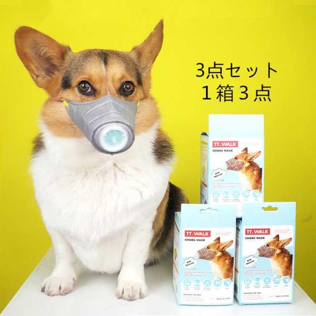 佩戴专用口罩的宠物犬(Rakuten)
