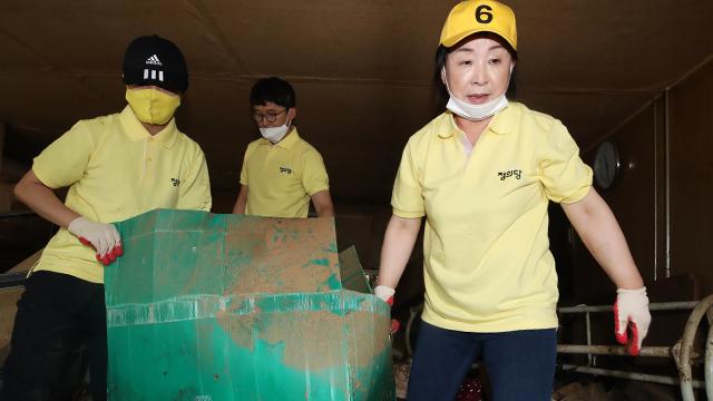 韩国女党首照片翻车:视察灾区自己动手 短袖却一尘不染