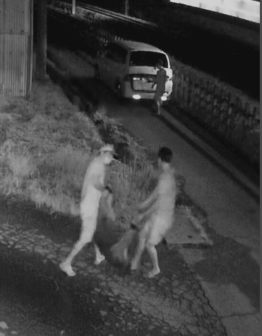 日本北关东家畜频频失窃 400头猪一夜之间被偷