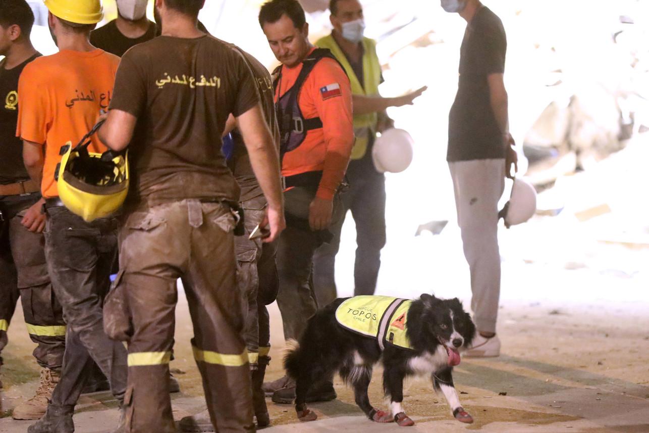 遗憾!黎巴嫩爆炸1个月废墟检测到心跳 搜3天无生还者