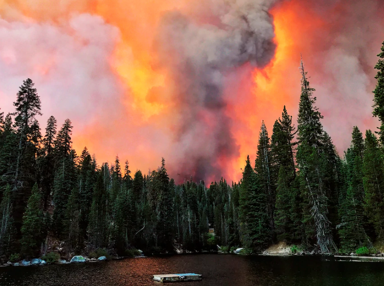 """美国山火惹的祸!加拿大多地空气质量""""爆表"""""""