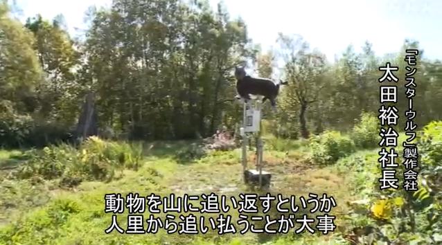 """为防熊出没,日本居民区摆出红眼机器""""魔鬼狼""""(图)"""